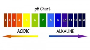 pH Chart Acid vs Alkaline